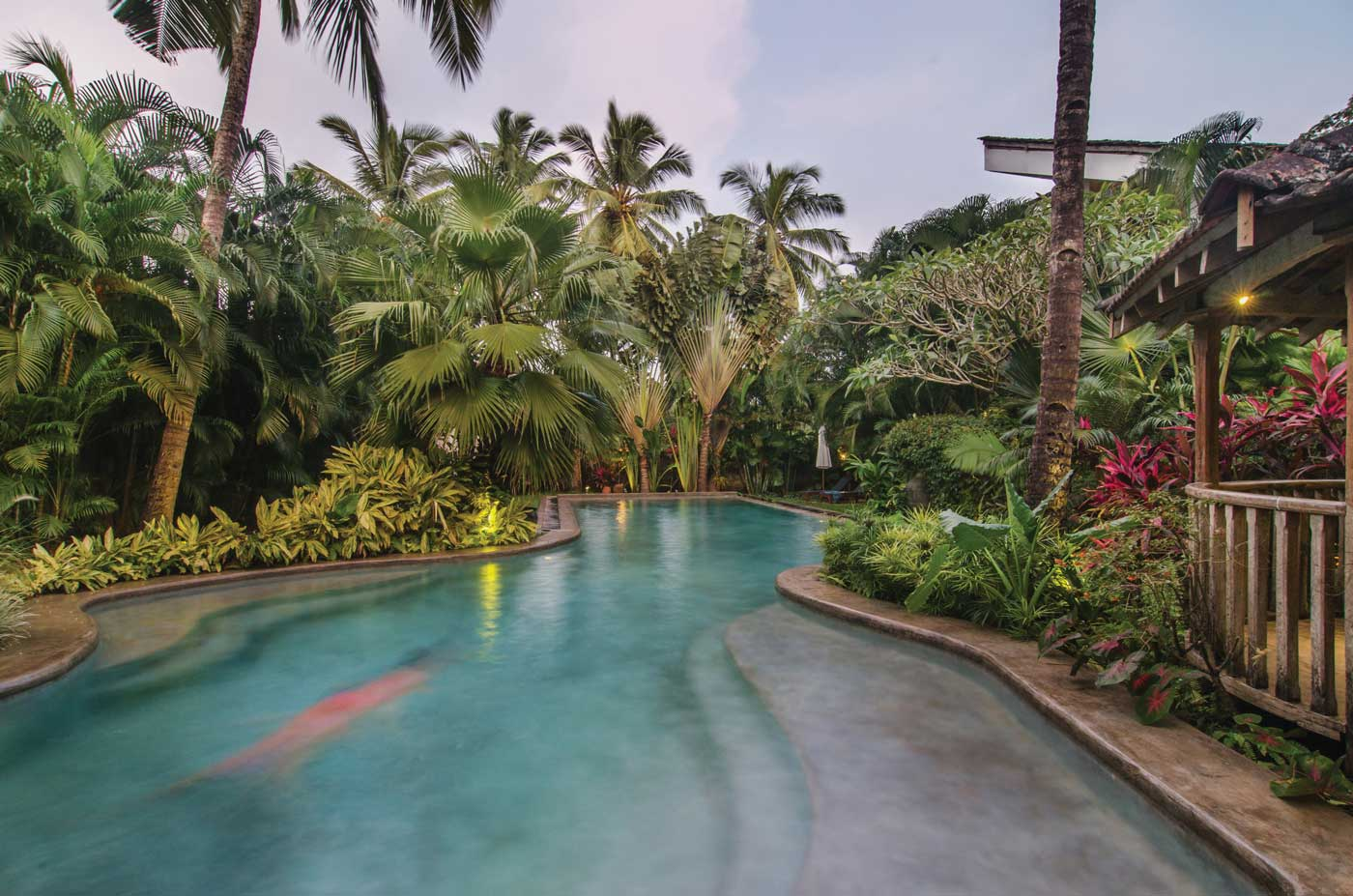 Free form swimming pool amid the luxury villas and jungle gardens of Coco Shambhala in Goa