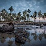 The palm fringed land of Sindhudurg I Coco Shambhala